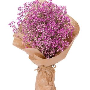 핑크안개꽃다발 10C