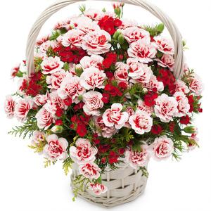 카네이션꽃바구니+코사지