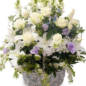 하얀장미혼합꽃바구니 B165