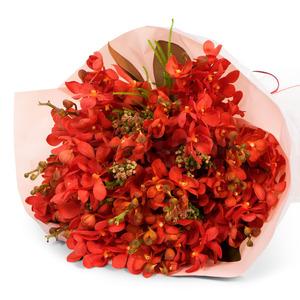 모카라꽃다발(빨강) M03