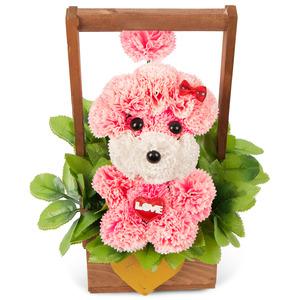 비누꽃분홍푸들 04T